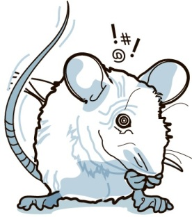 mousestress