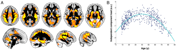 La imagen (Fuente: et al., 2014)