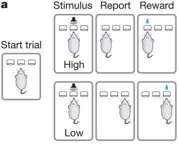 Esquema de la tarea de aprendizaje (Fuente: Xiong et al., 2015)
