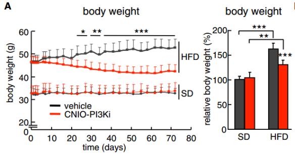 Reducción de la obesidad tras tratamiento a largo plazo. Representación gráfica del peso corporal durante los dos meses y medio que duró el tratamiento (izq.) y el peso corporal al final del tratamiento (dcha.) (Fuente: et al., 2015)