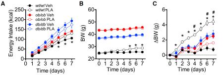 Administración de ARL o vehículo (i.p.) durante siete días a ratones carentes de LepR (db/db), ratones carentes de leptina (ob/ob) y ratones control (wt) (Fuente: Ottaway et al., 2015)