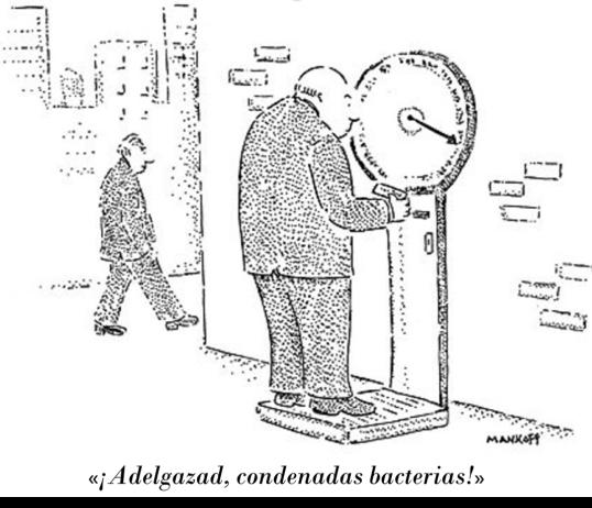 pesobacteria